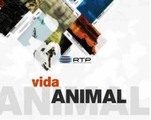 RTP Inf - Vida Animal em Portugal e no Mundo
